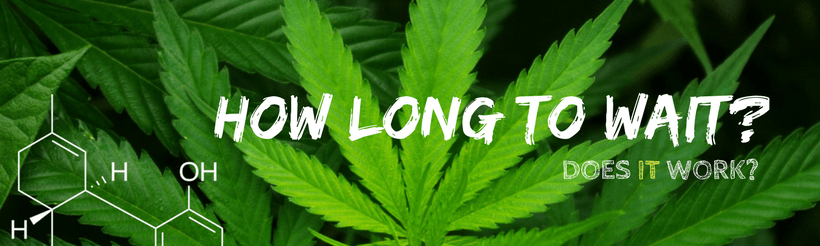 How Long Does CBD Oil Take To Work