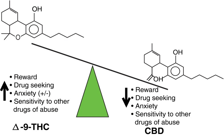 addiction recovery are promising